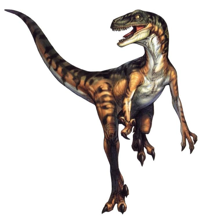 velociraptor facts jurassic park