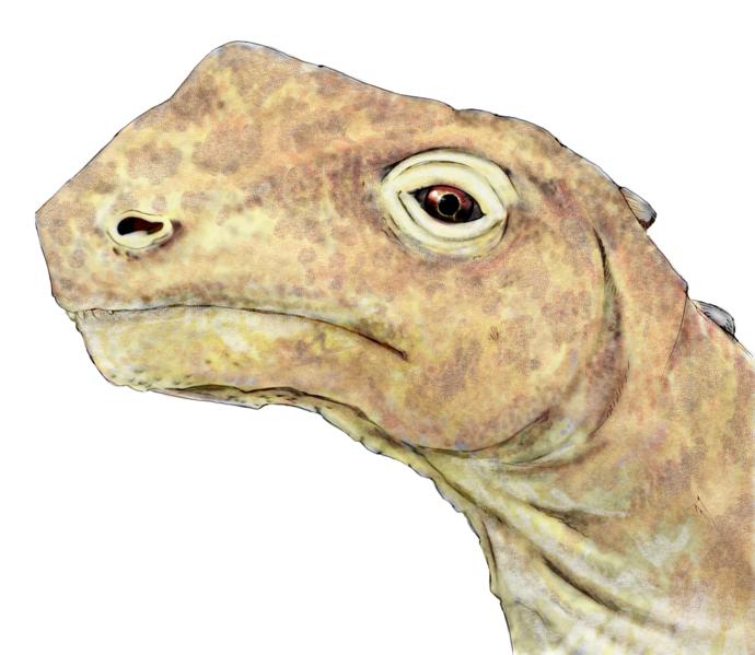 abrosaurus habitat