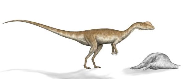 dilophosaurus habitat and size