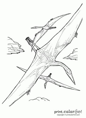 quetzalcoatlus dinosaur printable coloring page