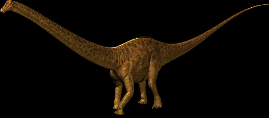 Diplodocus facts Sheet