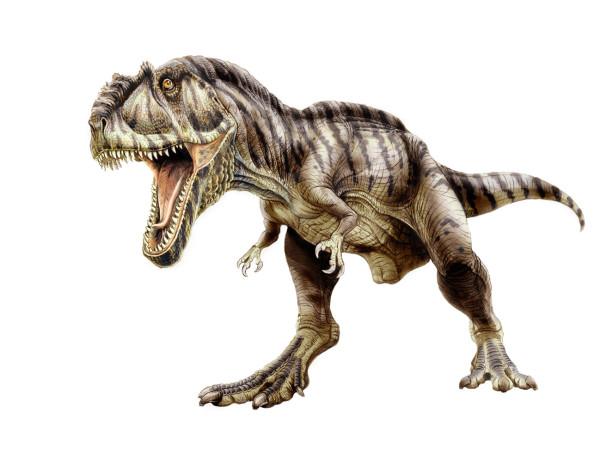 Dinosaurs Bigger than T-Rex