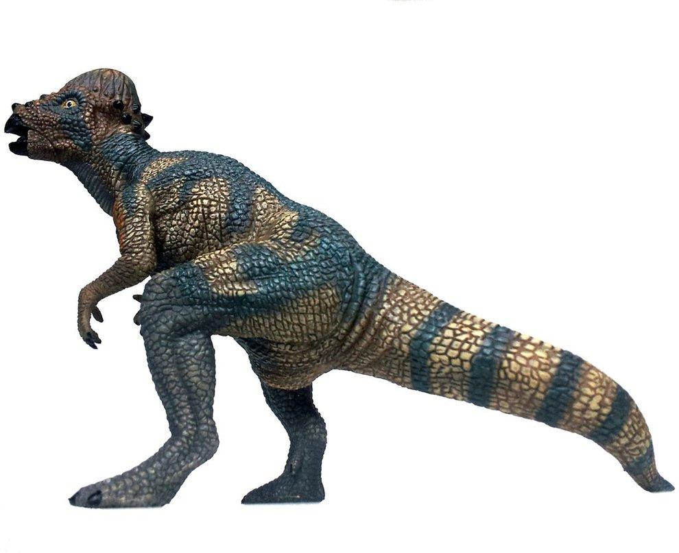 pachycephalosaurus interesting facts