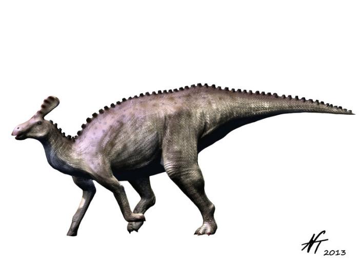 Tsintaosaurus habitat