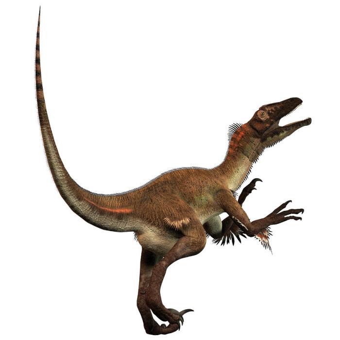 Utahraptor habitat