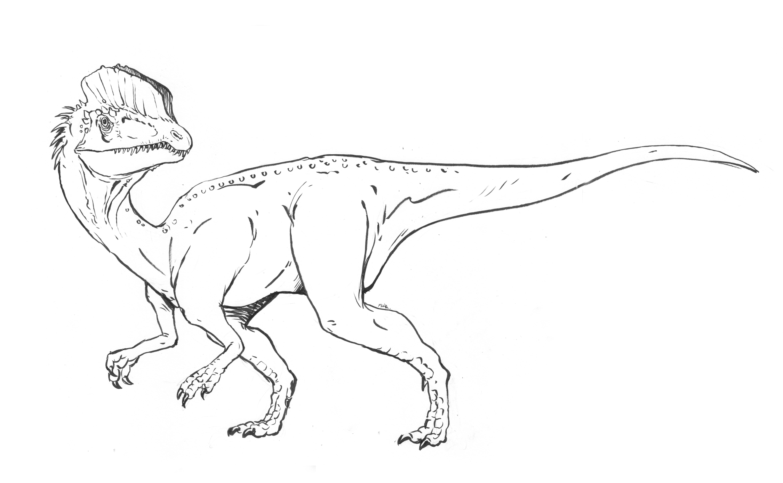 Dilophosaurus coloring sheet