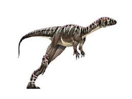 Agrosaurus Dinosaur Facts