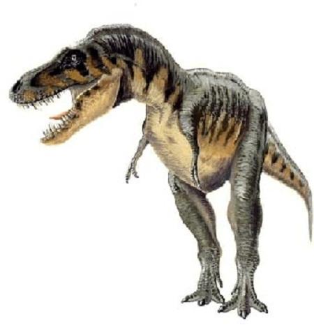 Agrosaurus Dinosaur Fact