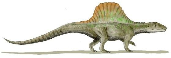 Arizonasaurus size