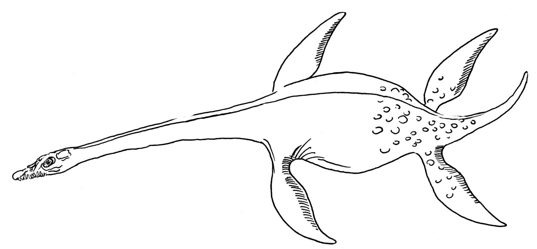 Free Plesiosaurus printable sheet