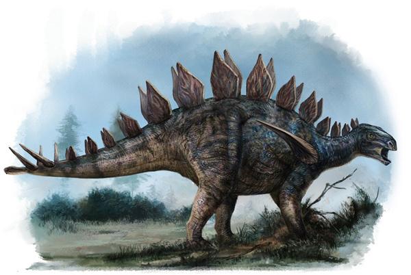 Huayangosaurus Dinosaur King