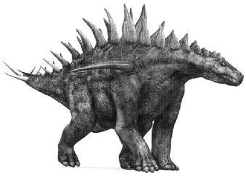 Huayangosaurus Dinosaurs