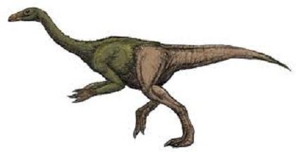 Juravenator Dinosaur