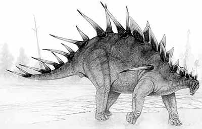 Kentrosaurus dinosaurs Fact