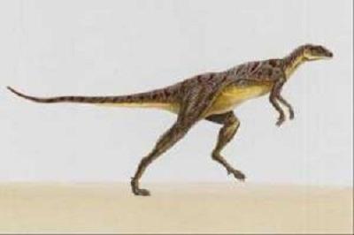 Lesothosaurus Fact