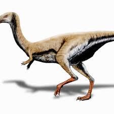 Limusaurus Dinosaur Fact