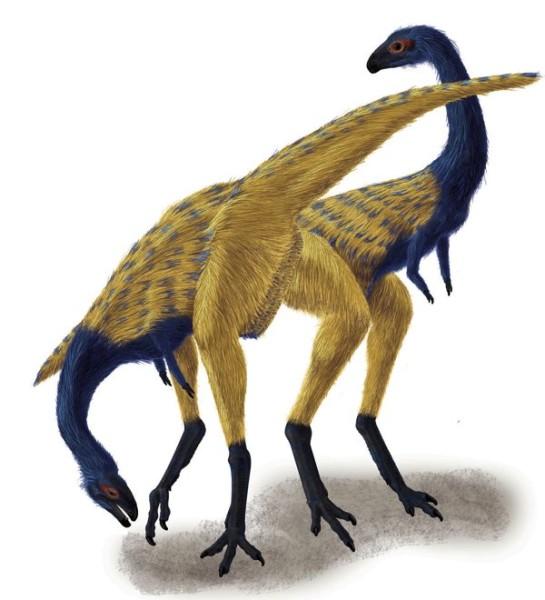 Limusaurus Fact