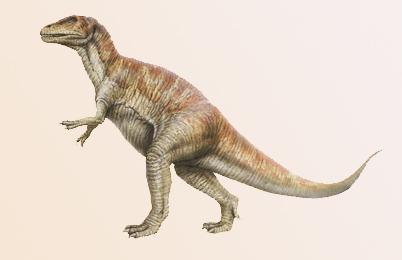 Megalosaurus Dinosaur