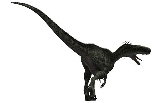 Monolophosaurus Dinosaur Sheet