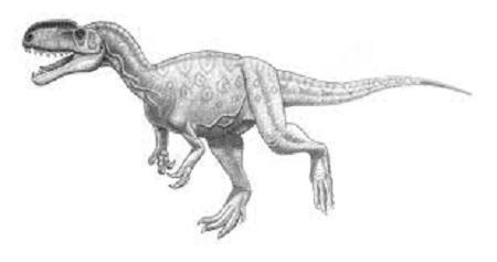 Monolophosaurus Fact