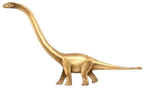Omeisaurus Dinosaur Fact