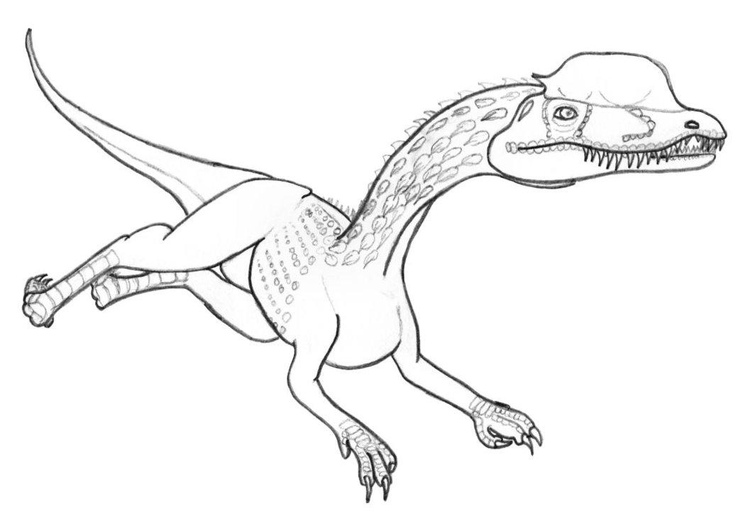 Free Dilophosaurus coloring