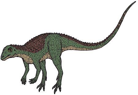 Scutellosaurus Dinosaur