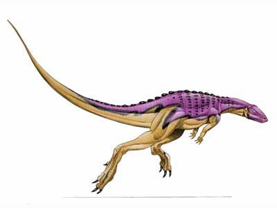 Scutellosaurus Predator
