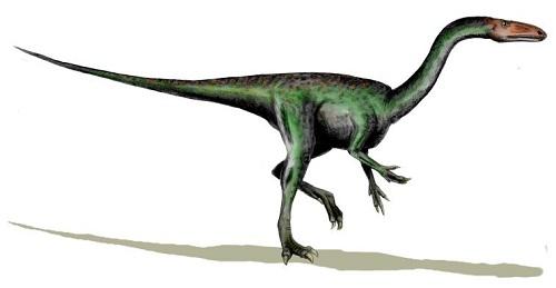 Segisaurus Dinosaur Fact