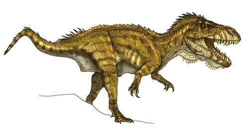 Torvosaurus Fact