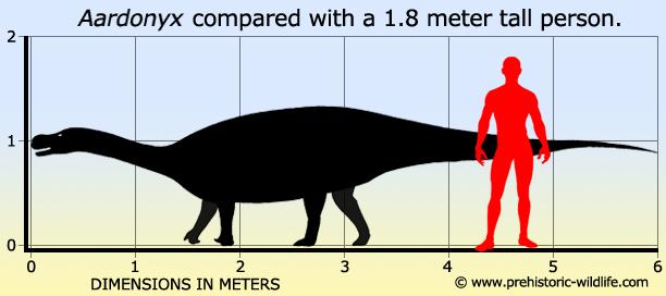 Aardonyx Size Comparison
