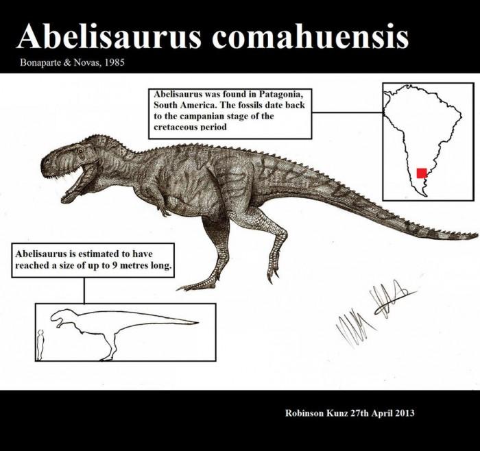 Abelisaurus Infographic