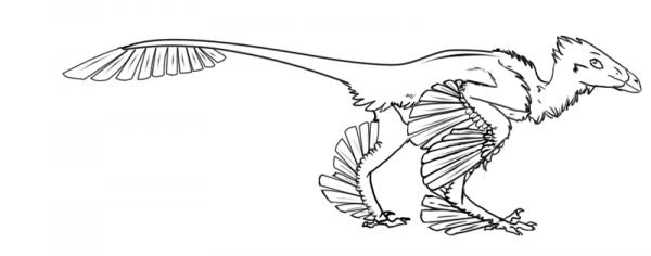 Microraptor Color Microraptor free lines